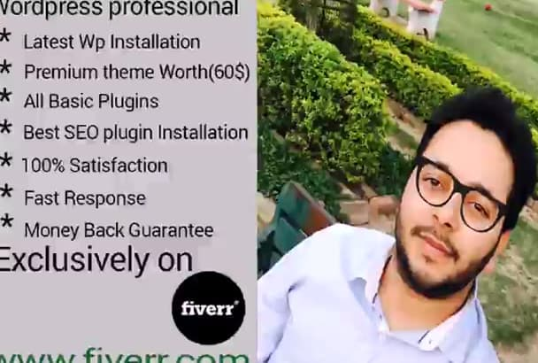 make Pro Wordpress Website For You
