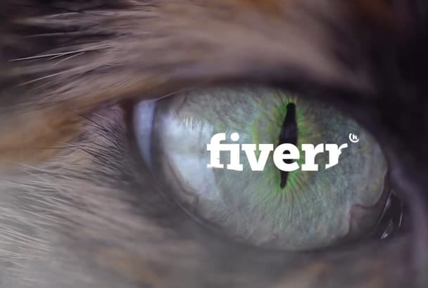 insert a video, text or logo in the eye of a cat