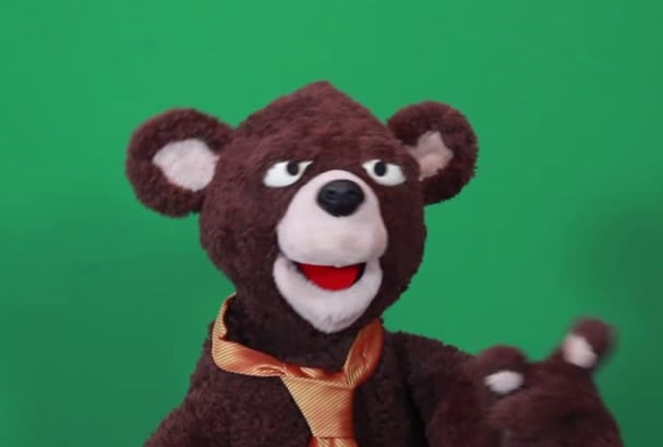 record your bear puppet promo videos with Beary Norman