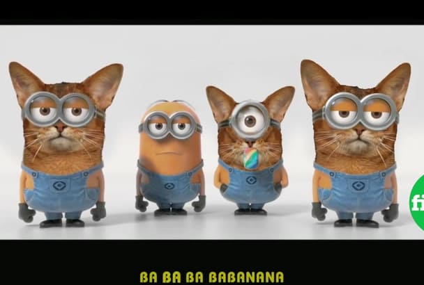 create a Cat Minion hybrid singing video for you