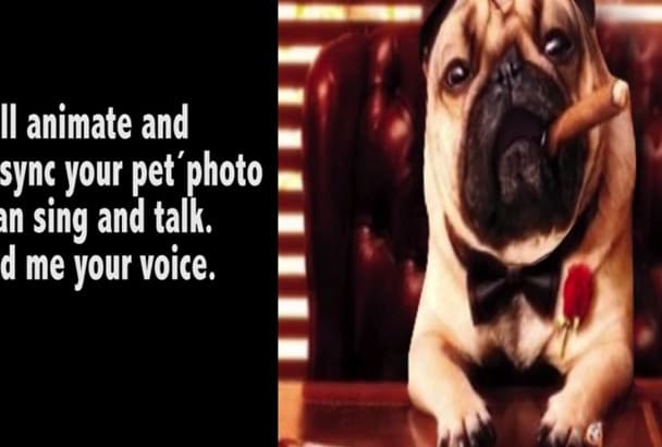 animate and lipsync a photo of your pet
