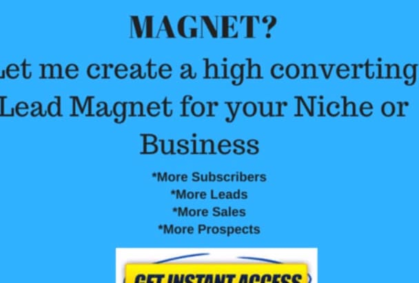 create a professional  lead magnet for your audience
