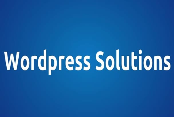 fix any wordpress issue in 24 hours