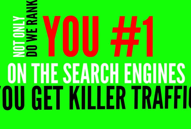 provide daily 3000 targeted ORGANIC traffic for 60 days