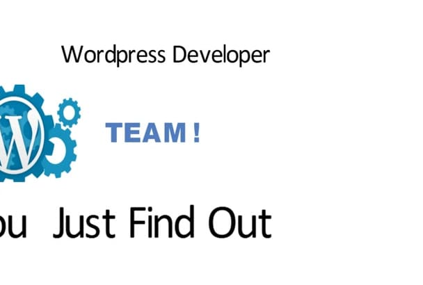 fix any issue of your WordPress site