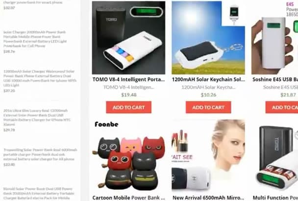 setup your Ali Express Amazon Dropship Ecom WordPress store