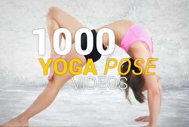 give you 250 YOGA exercise videos