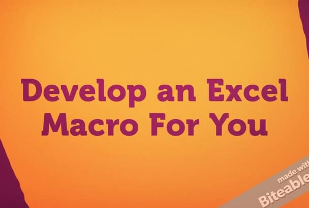 develop an Excel Macro For You