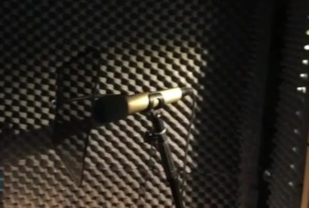 record a 30 sec quality voiceover in Czech