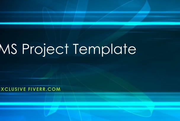 provide ms project template