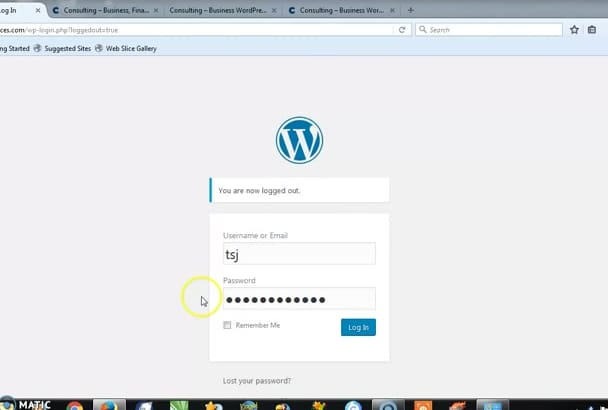 install a WordPress theme and customize your site in 4 hours max