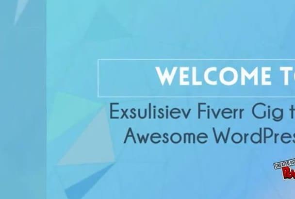 customize wordpress, fix errors, or edit themes