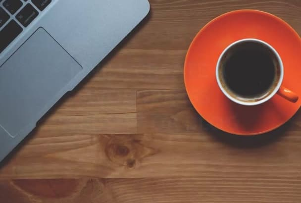 create a Wordpress Professional Website or Blog