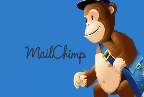 design Responsive editable MAILCHIMP newsletter template