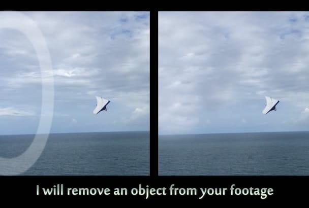 erase an object from your video