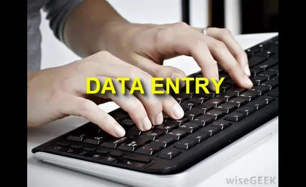do 4 hours data entry Like PDF to excel or word and copy paste work