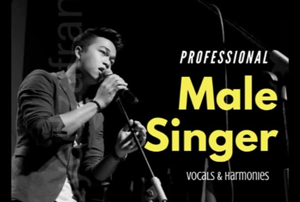 record professional male vocals for your song