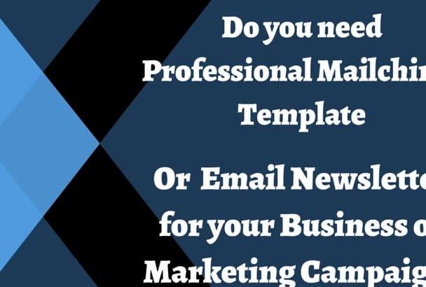 design Professional  Mailchimp Template