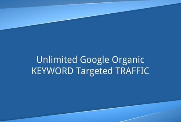 keyword Targeted Google Organic Traffic,Visitors for Website