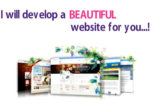 do Website design or Full Website Creation