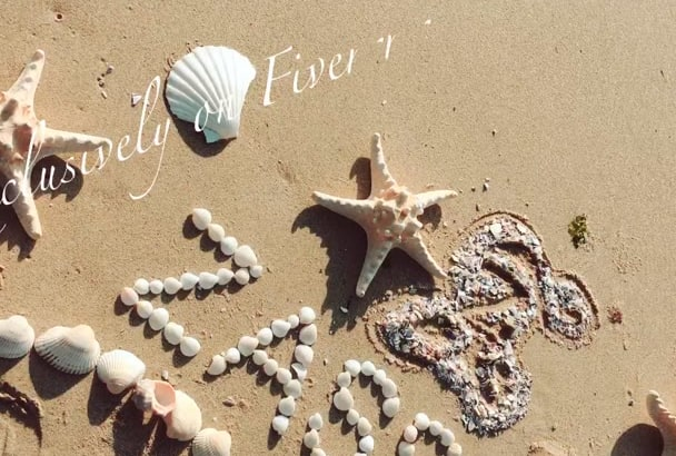 write your amazing text with shells on the beach