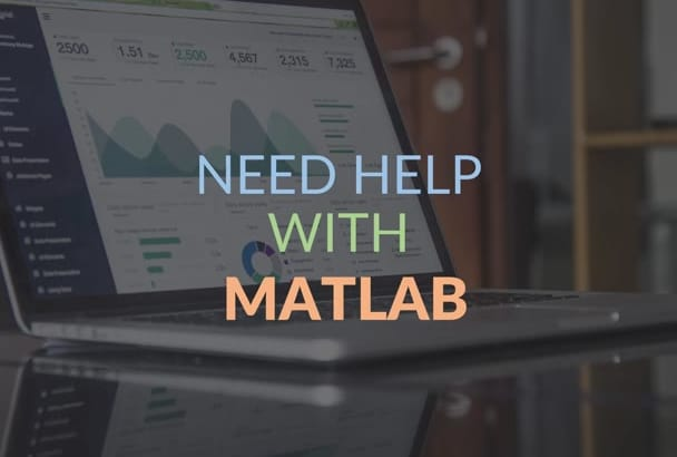 do MATLAB assignments  and projects