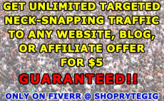 teach you how to generate unlimited targeted neck snapping traffic to any URL