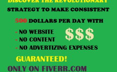 show you revolutionary strategy to make consistent 500usd a day with no website