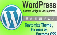 install wordpress theme as like your demo theme