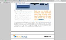 write persuasive sales copywriting or product descriptions