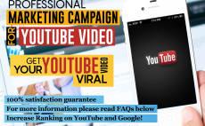 do professional youtube video marketing