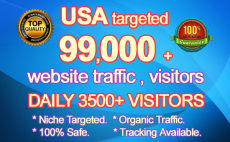 drive 99000 USA targeted organic website visitors traffic