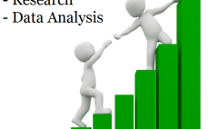 offer support in statistical research and data analysis