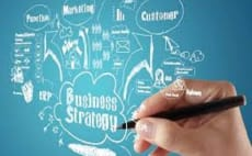 do business and management assignments work