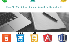 do any kind of javascript,jquery and angularjs work for you
