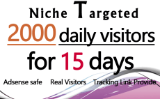 promote your website by sending unlimited niche targeted web traffic