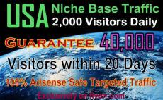 find and drive 40k niche base us web traffic