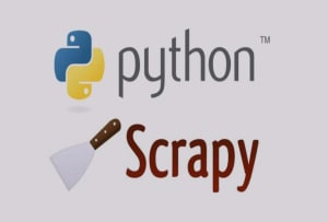 Fiverr / Search Results for 'website data scrap'