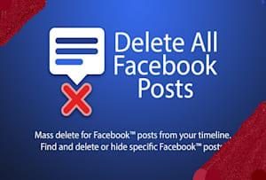 Fiverr / Search Results for 'delete facebook post'