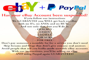 Fiverr / Search Results for 'ebay suspend'