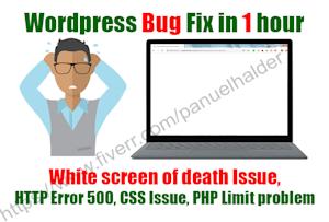 Fiverr / Search Results for 'wordpress error 500'