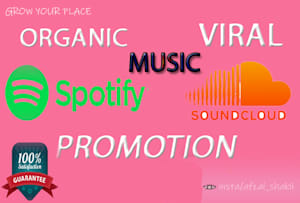 Music Promotion Services - Social Media & Radio | Fiverr