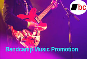 Fiverr / Search Results for 'bandcamp promotion'