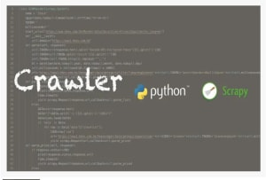 Fiverr / Search Results for 'json to excel'