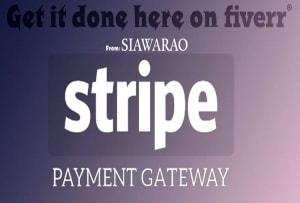 Fiverr / Search Results for 'integrate stripe'