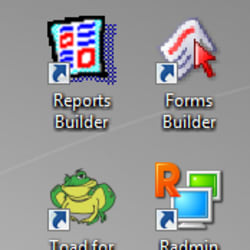 Oracle Form Builder 10g