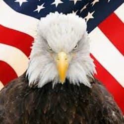 eagletaxcpas