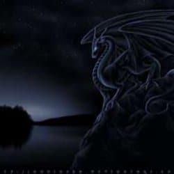 shadowdragon