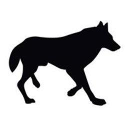 jpwolfman1