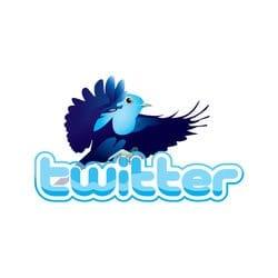 online_twitter